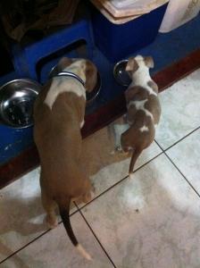 Llevando Su vida Normal en su casa, Junto con su Hermana
